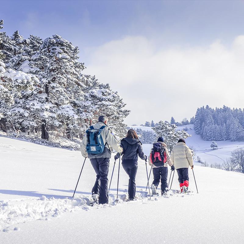 Balade Spéciale Saint-Sylvestre en pleine Nature Markstein  - Balades spéciales Saint-Sylvestre - Destination Sport Nature - Voir en grand