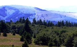Contemplons la plus belle réserve naturelle des Vosges - La plus belle réserve naturelle des Vosges - Destination Sport Nature - Voir en grand
