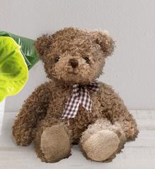 Teddy - Peluche - Fleurs Vetter... Votre fleuriste à Thann - Voir en grand