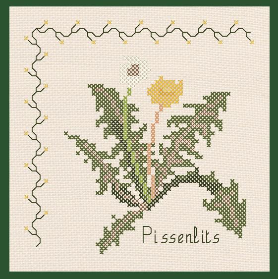 029-2011 Pissenlits - Voir en grand