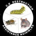 C. E Destruction