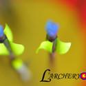 L'ARCHERY