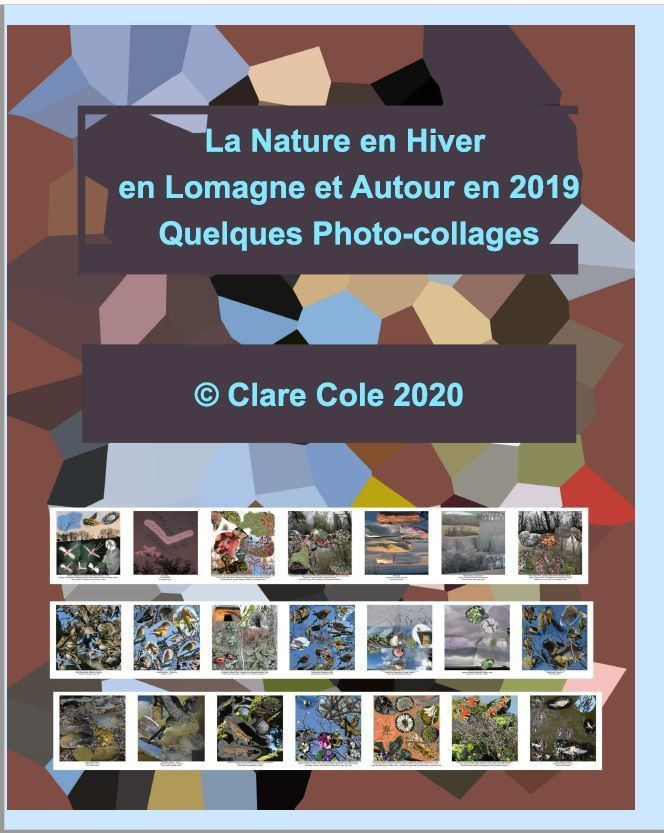 Nature France Hiver Dec, Jan-Fev 2019, E-Book, Photocollages - Photo-Collages Nature d'IC - MOTS ET IMAGES  - Voir en grand